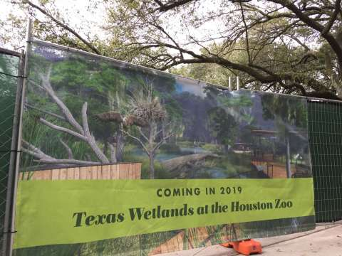 Updates Coming for Houston Zoo